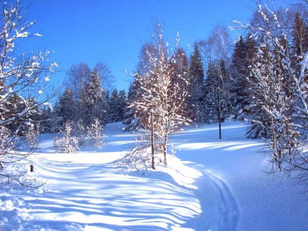 Mơ thấy tuyết là điềm báo điều gì?