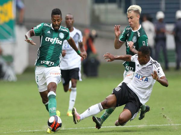 Soi kèo Botafogo vs Palmeiras, 07h30 ngày 8/10 - VĐQG Brazil